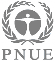 INSTITUTIONS: PNUE logo